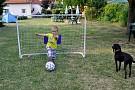 Sandahouse - Trávnaté ihrisko - futbal